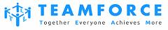 Teamforce Labour Ltd logo
