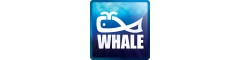 IT Support Analyst | Whale Tankers