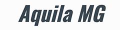 Aquila Management Group Ltd